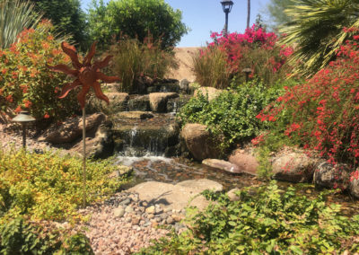 Pondless Waterfall with Mature Flowers and Plants