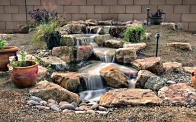 Frequently Asked Questions about Ponds, Pond Maintenance and Building