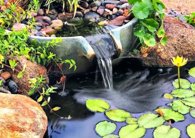 Close Up of Pondless Water Fall With Mature Plants