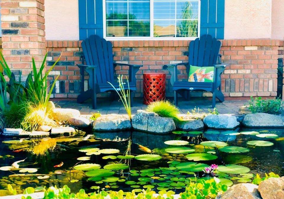 Koi Pond Scottsdale