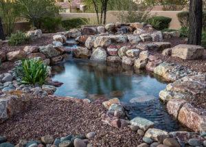 Backyard Pond With Rocks and Plants